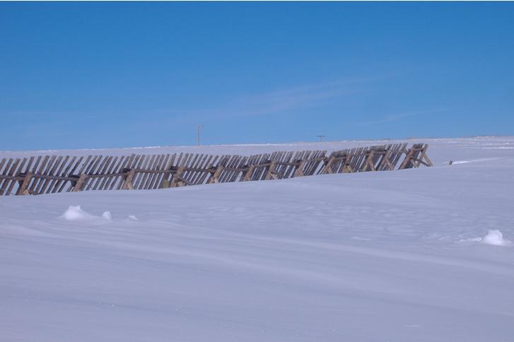 Buck and Rail Snow Fence